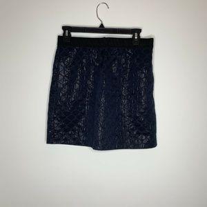 Ann Taylor Loft Womens Size 4P Dark Shiny Skirt